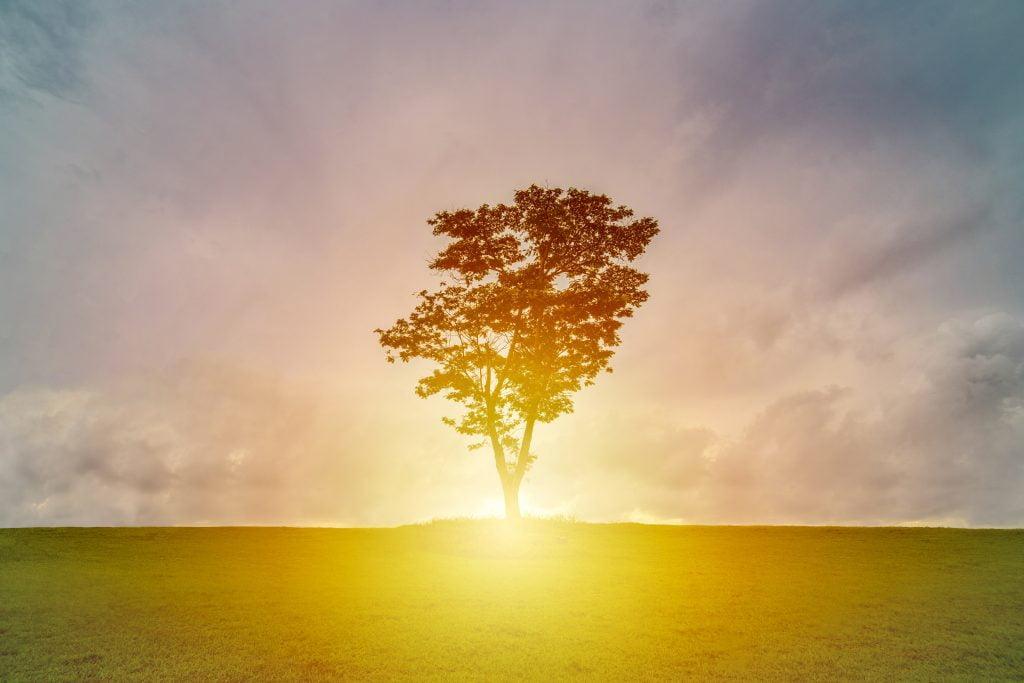 Spirituelle Nyheder - Anja Andersen om sine spirituelle landstrænerprincipper
