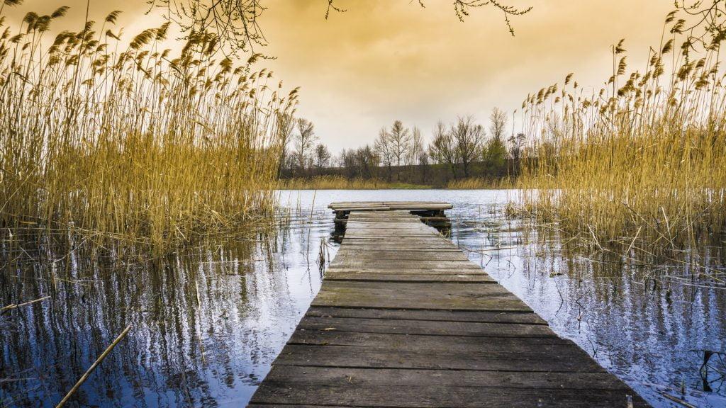 Spirituelle Nyheder - Kraften i at have øjenkontakt - eyegazing